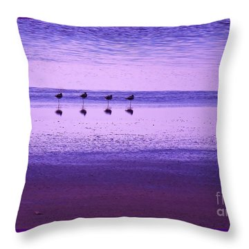 Avocets Resting In The Sunset Throw Pillow