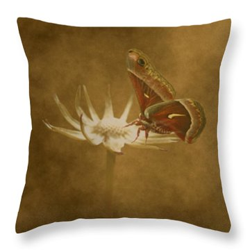 Resting Moth Throw Pillow