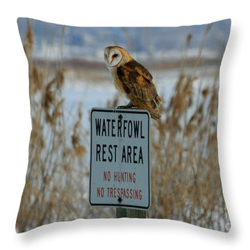 Resting Owl Throw Pillow by Marty Fancy
