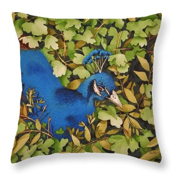 Resting Peacock Throw Pillow by Katherine Young-Beck