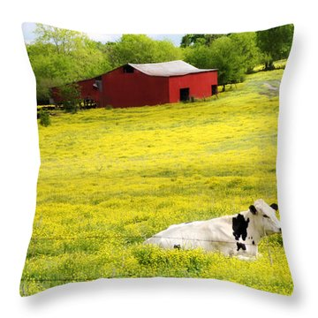 Resting Place Throw Pillow by Amy Tyler
