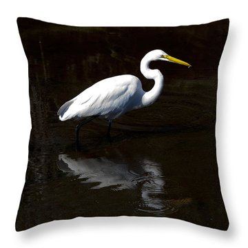 Resting Reflection Throw Pillow