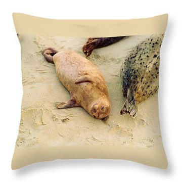 Throw Pillow featuring the photograph Resting Seal by Kathy Bassett