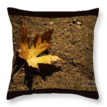 Resting Shadow Sands Throw Pillow