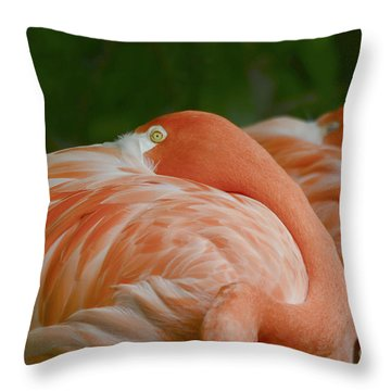 Resting Time Throw Pillow