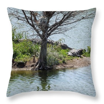 Throw Pillow featuring the photograph Resting Under A Tree by Ron Davidson