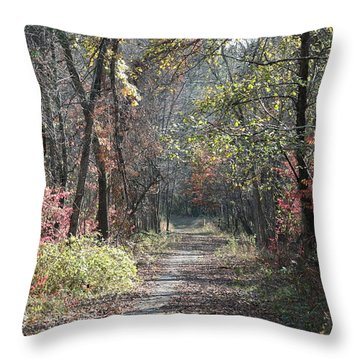 Restless No. 2 Throw Pillow