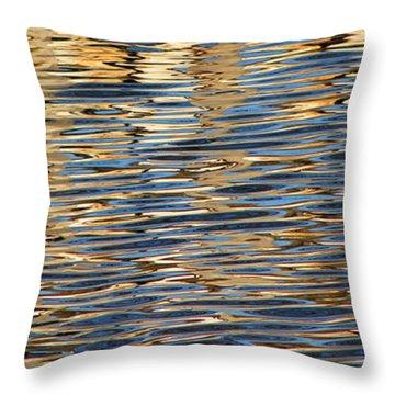 Retaining Wall Reflection 1 Throw Pillow