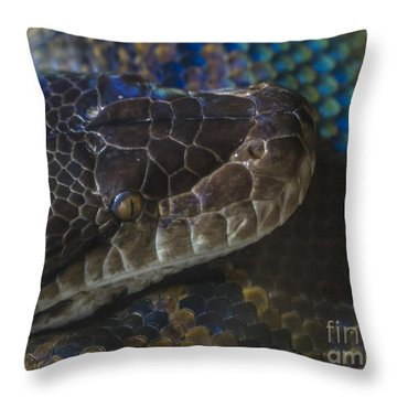 Reticulated Python With Rainbow Scales Throw Pillow