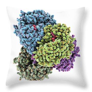 Molecular Model Throw Pillows