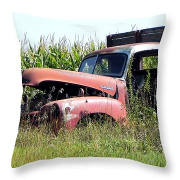 Throw Pillow featuring the photograph Retired by Deb Halloran