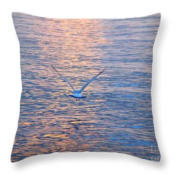 Returning  Throw Pillow by Susan  Dimitrakopoulos