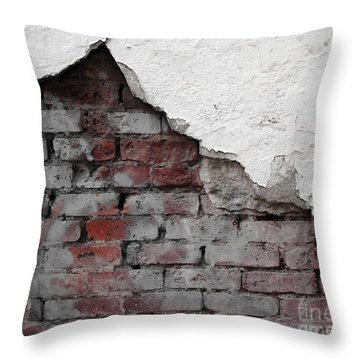 Revealed Throw Pillow