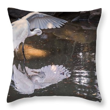 Revealed Landscape Throw Pillow