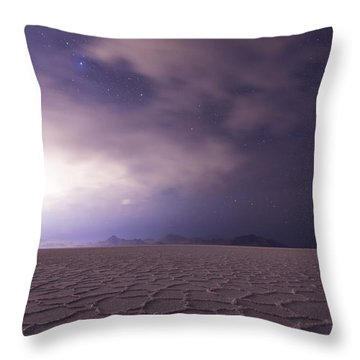 Silent Reverie Throw Pillow