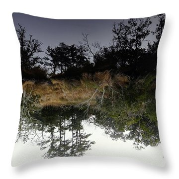 Reverse Reflection On A Crab Fishermans Canal Throw Pillow
