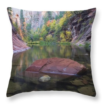 Revisited Throw Pillow by Peter Coskun