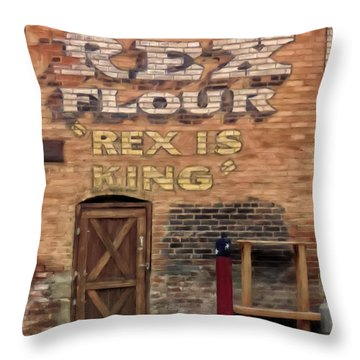 Rex Is King Throw Pillow by Michael Pickett