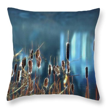Throw Pillow featuring the photograph Rhapsody In Blue by Cindy Greenstein