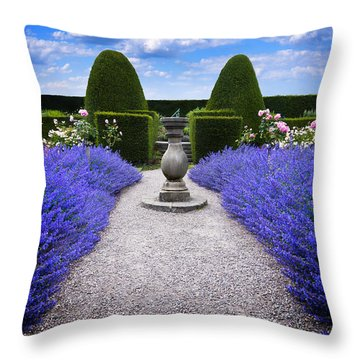 Throw Pillow featuring the photograph Rhapsody In Blue by Meirion Matthias