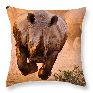 Charging Throw Pillows