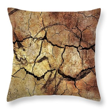 Rhinoceros From Chauve Cave Throw Pillow by Dragica  Micki Fortuna