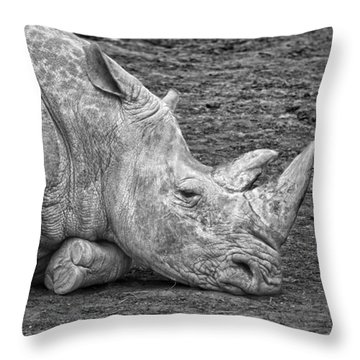 Rhinoceros Throw Pillow by Nancy Aurand-Humpf