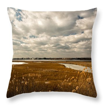 Rhode Island Marshes 1 Throw Pillow