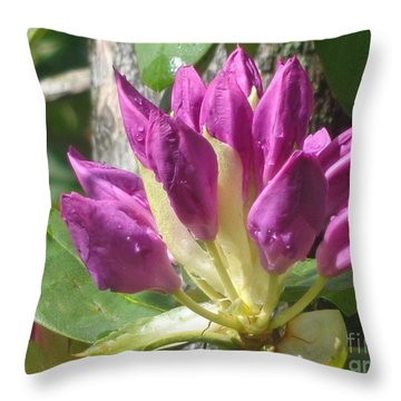 Rhodo Buds N Raindrops Throw Pillow