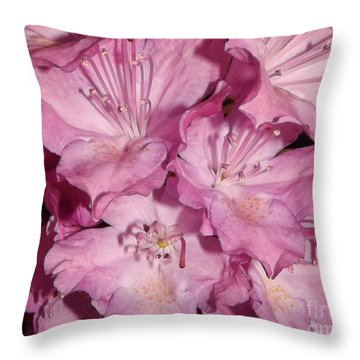 Rhododendron Bliss Throw Pillow by Sara  Raber