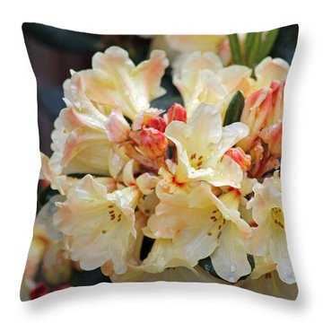 Rhododendron Nancy Evans Throw Pillow