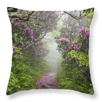 Rhododendron Time In North Carolina Throw Pillow by Bill Swindaman