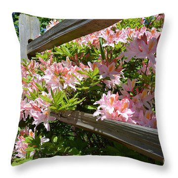 Rhododendrons In Tumwater Falls Park Throw Pillow