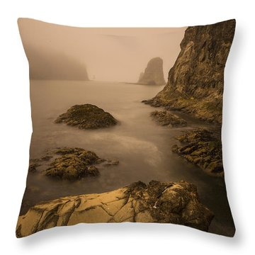 Rialto Beach Rocks Throw Pillow