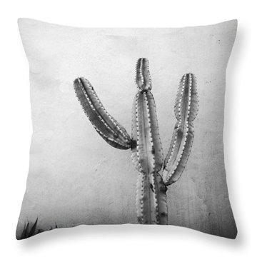 Ribbing Throw Pillow by David Pantuso
