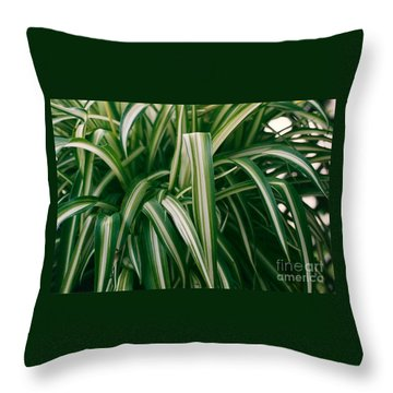 Ribbon Grass Throw Pillow