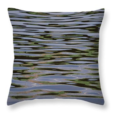 Ribbons Of River Throw Pillow