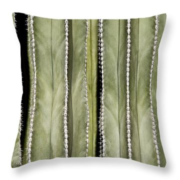 Ribs Throw Pillow