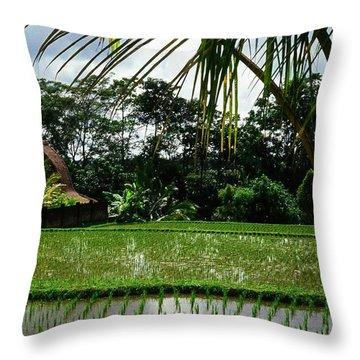Rice Fields Bali Throw Pillow by Juergen Weiss