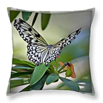 Rice Paper Butterfly 2b Throw Pillow