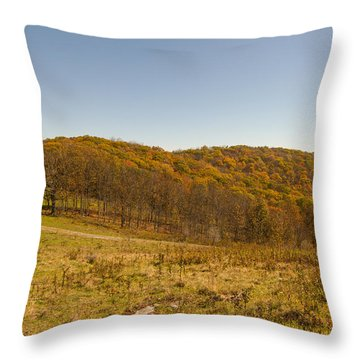 Rich Mountain Autumn Throw Pillow
