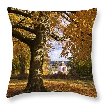 Richmond Autumn Throw Pillow by Maj Seda