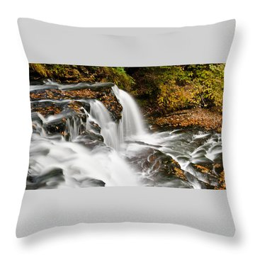 Ricketts Glen - On Top Of The Fall Throw Pillow