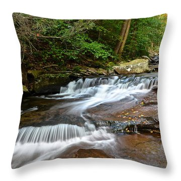 Ricketts Glen Throw Pillow by Frozen in Time Fine Art Photography