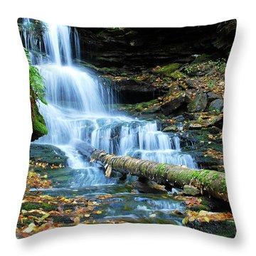 Ricketts Glen Hidden Waterfall Throw Pillow