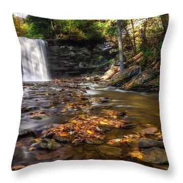 Ricketts Glen Waterfall Throw Pillow