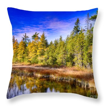 Ridges Repose Throw Pillow