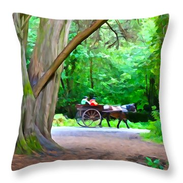 Riding In Style Throw Pillow