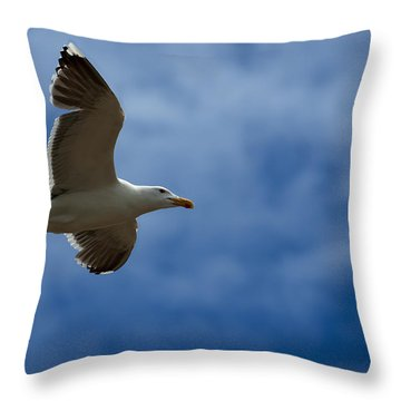 Riding The Currents Throw Pillow by Murray Bloom