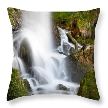 Rifle Falls Throw Pillow by Steven Reed
